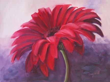 Red Gerbera Daisy TracyWall (c)