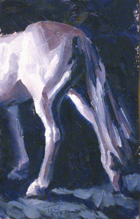 sm-09-horse-study-25