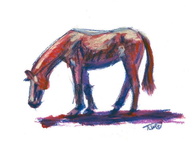 sm 09 Horse Study #29 (c)TracyWall
