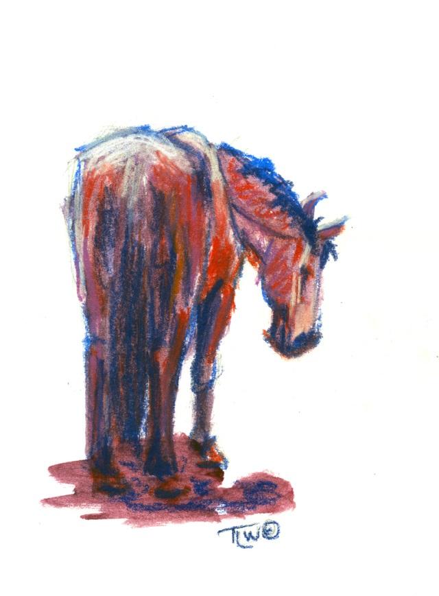 sm 09 Horse Study #30