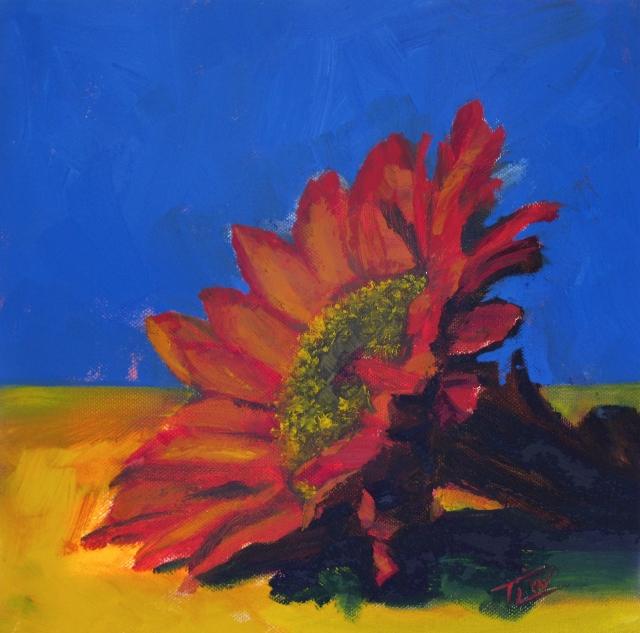 sm 09 Autumn Sun (c) TracyWall