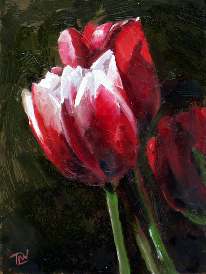 Tulips #4 (c) Tracy Wall