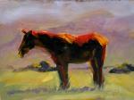 Horse Study #44 ©2011 Tracy Wall
