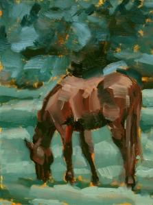 Horse Study #48 ©Tracy Wall