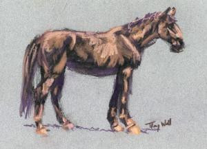 Horse Study #8, ©2006 Tracy Wall
