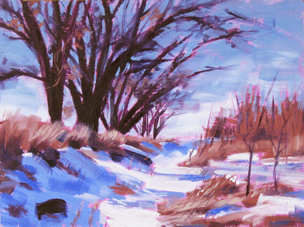 Trail Study #16 (Aurora) ©2012 Tracy Wall
