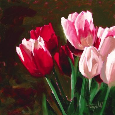 Awakening Tulips, ©2012 Tracy Wall
