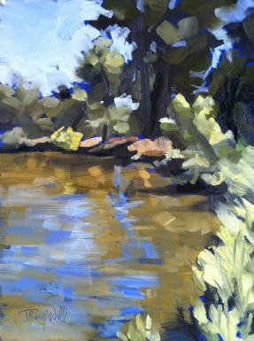 Bluegrass on the South Platte, ©2012 Tracy Wall