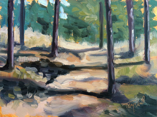 Shadows on Lookout, ©2012 Tracy Wall