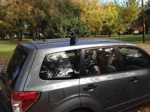 mug on car 2014-10