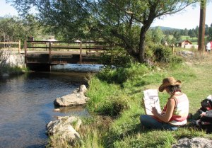 Who's painting at Dedisse Park in Evergreen CO?  (photo courtesy of Sally White)